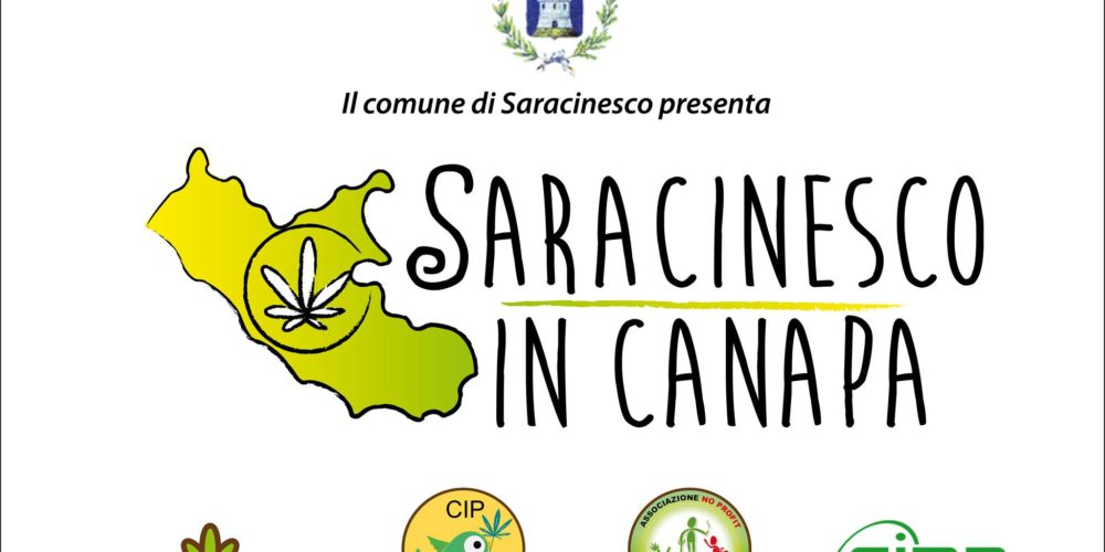 Saracinesco in Canapa