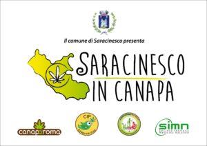 Saracinesco in Canapa
