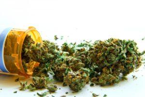 Cannabis Terapeutica Emilia Romagna