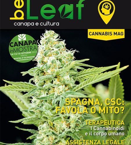 BeLeaf Magazine N 0 Cannabis Mag
