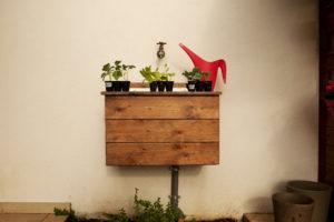 Contenitori coltivazione peperoncino fai-da-te