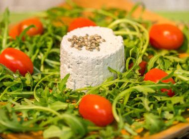 hemp fu ricotta di semi di canapa sativa ricetta