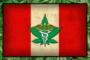 Perù: il Comitato approva la legge per legalizzare la cannabis medica
