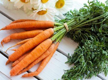 Orto in balcone - Coltivare le carote