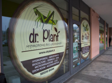 Dr Plant Bergamo
