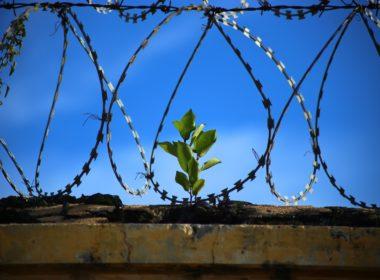 Dal carcere si vuole fuggire! Come fare?