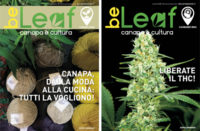 Numero 8 BeLeafMagazine