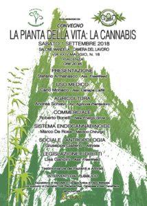 La pianta della vita: la cannabis