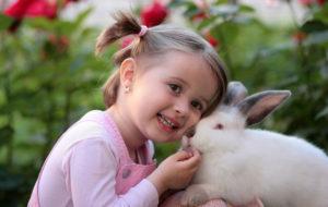 Vegan - Coniglio nano bambini