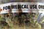 Tutela legale gratuita per i malati in cura con la cannabis: la proposta di Asacc
