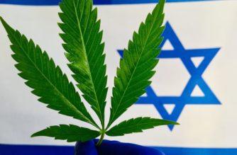 Cannabis, Israele verso le legalizzazione
