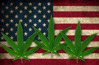 America divisa su tutto, tranne che sulla cannabis