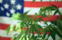 Gli Usa stanno per votare la legalizzazione della cannabis a livello federale