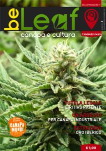 BeLeaf - Numero 6 - CannabisMag