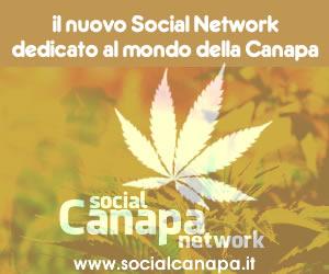 SocialCanapa